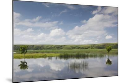 Romania, Danube River Delta, Baltenii de Sus, Danube River Reflection-Walter Bibikow-Mounted Photographic Print
