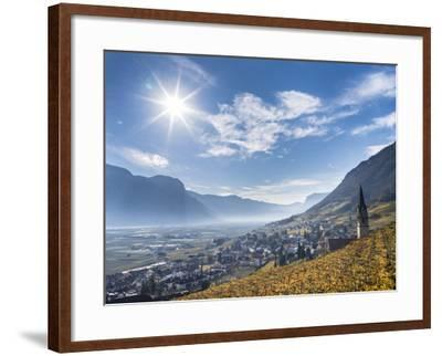 Vineyards and the Valley of the River Etsch. South Tyrol, Italy-Martin Zwick-Framed Photographic Print