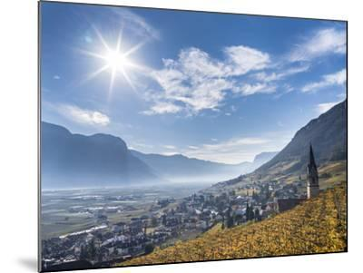Vineyards and the Valley of the River Etsch. South Tyrol, Italy-Martin Zwick-Mounted Photographic Print