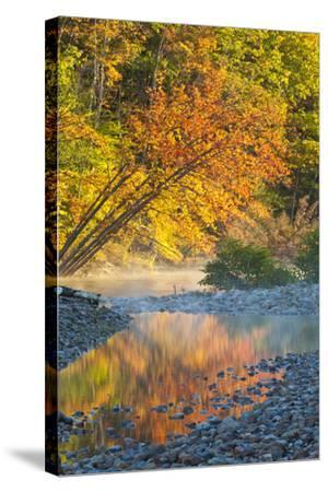 Fall Colors Reflect in the Saco River, New Hampshire. White Mountains-Jerry & Marcy Monkman-Stretched Canvas Print