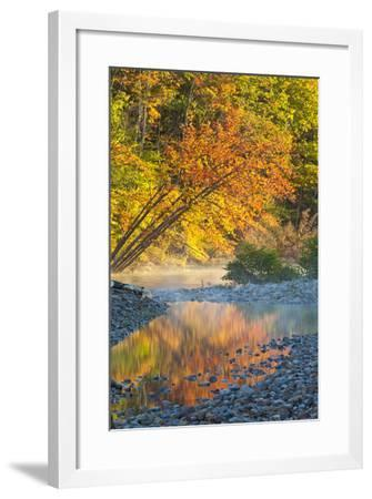 Fall Colors Reflect in the Saco River, New Hampshire. White Mountains-Jerry & Marcy Monkman-Framed Photographic Print