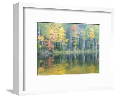 Michigan, Upper Peninsula. Fall Colors on Thornton Lake, Alger Co-Julie Eggers-Framed Photographic Print