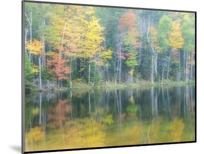 Michigan, Upper Peninsula. Fall Colors on Thornton Lake, Alger Co-Julie Eggers-Mounted Photographic Print