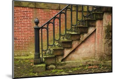 USA, Georgia, Savannah, Steps in the Historic District-Joanne Wells-Mounted Photographic Print
