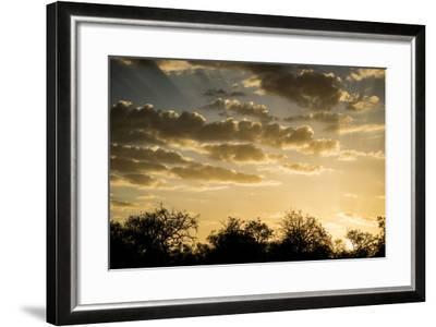 Kenya, Chyulu Hills, Old Donyo Wuas Lodge, Mbirikani, Sunrise-Alison Jones-Framed Photographic Print