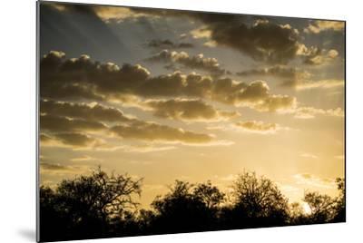 Kenya, Chyulu Hills, Old Donyo Wuas Lodge, Mbirikani, Sunrise-Alison Jones-Mounted Photographic Print