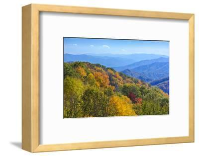 North Carolina, Great Smoky Mountains NP, View from Newfound Gap Road-Jamie & Judy Wild-Framed Photographic Print