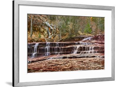 Left Fork Virgin River Zion National Park, Utah, USA-John Ford-Framed Photographic Print
