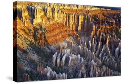 USA, Utah, Sunrise at Bryce Point Bryce National Park-John Ford-Stretched Canvas Print