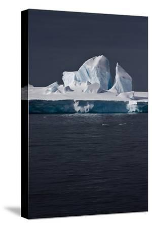 Antarctica. Iceberg-Janet Muir-Stretched Canvas Print