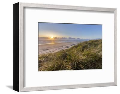 Sand Dunes and Pacific Ocean in the Oregon Dunes NRA, Oregon-Chuck Haney-Framed Photographic Print