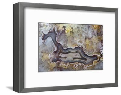 Banded Agate, Sammamish, Washington State-Darrell Gulin-Framed Photographic Print