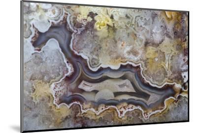 Banded Agate, Sammamish, Washington State-Darrell Gulin-Mounted Photographic Print