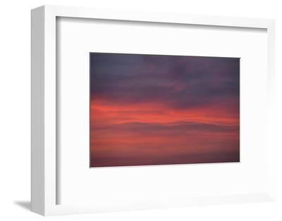 Altocumulus and Cirrus Clouds in the Evening Light-Greg Probst-Framed Photographic Print