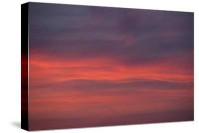 Altocumulus and Cirrus Clouds in the Evening Light-Greg Probst-Stretched Canvas Print