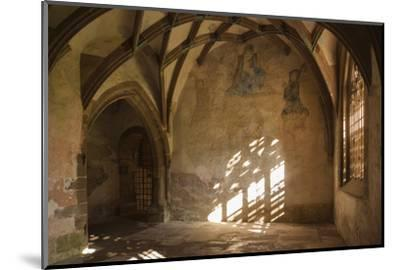 Germany, Baden-Wurttemberg, Maulbronn, Kloster Maulbronn Abbey-Walter Bibikow-Mounted Photographic Print