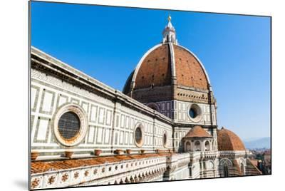 The Dome of the Duomo Santa Maria del Fiore, Florence, Tuscany, Italy-Nico Tondini-Mounted Photographic Print