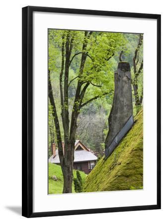 Romania, Transylvania, Bran, Bran Castle, Grass Covered Farm Buildings-Walter Bibikow-Framed Photographic Print