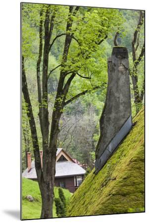 Romania, Transylvania, Bran, Bran Castle, Grass Covered Farm Buildings-Walter Bibikow-Mounted Photographic Print
