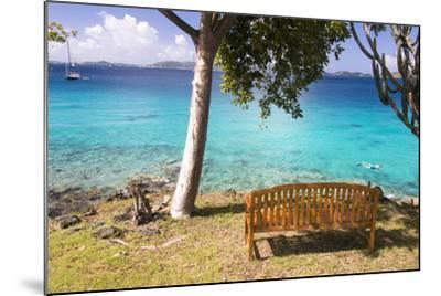 Us, Usvi, Snorkelers St John with St Thomas Beyond-Trish Drury-Mounted Photographic Print