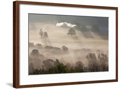 Misty Autumn Morning, Uley, Gloucestershire, England, UK-Peter Adams-Framed Photographic Print
