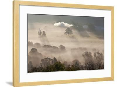 Misty Autumn Morning, Uley, Gloucestershire, England, UK-Peter Adams-Framed Photographic Print