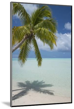 Cook Islands, Aitutaki. One Foot Island. White Sand Beach with Trees-Cindy Miller Hopkins-Mounted Photographic Print