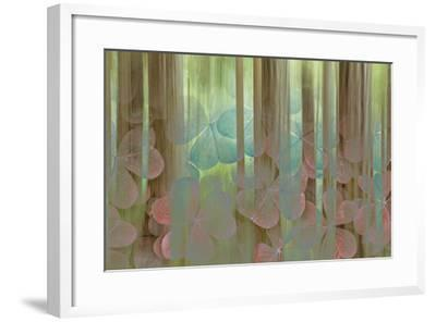USA, Washington State, Seabeck. Collage of Oxalis and Trees-Don Paulson-Framed Photographic Print