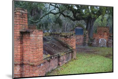 Georgia, Savannah, Burial Vaults in Historic Colonial Park Cemetery-Joanne Wells-Mounted Photographic Print
