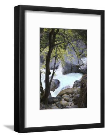 Yosemite National Park, Wyoming, USA. Intimate River Scene-Janet Muir-Framed Photographic Print