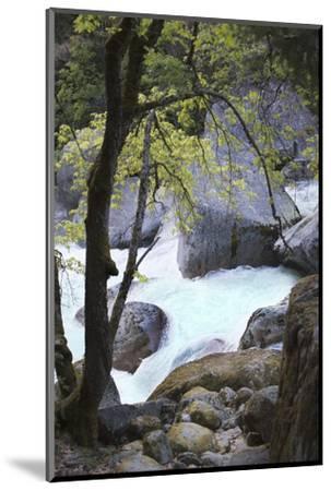 Yosemite National Park, Wyoming, USA. Intimate River Scene-Janet Muir-Mounted Photographic Print
