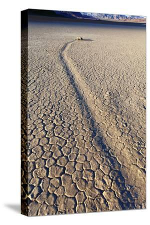 Mysterious Sliding Rock Race Track Death Valley, California, USA-John Ford-Stretched Canvas Print