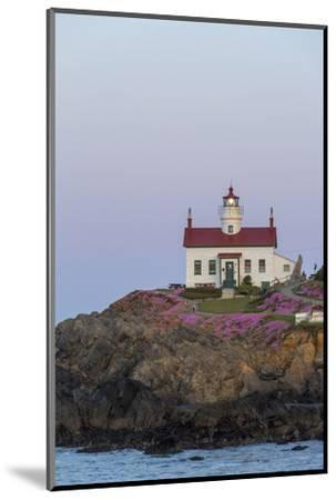 Battery Point Lighthouse in Crescent City, California, USA-Chuck Haney-Mounted Photographic Print