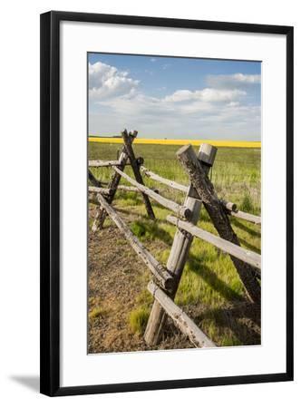 Idaho, Camas Prairie, Wooden Fence at Tolo Lake Access Area-Alison Jones-Framed Photographic Print