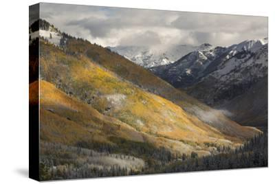 Colorado, San Juan Mountains. Red Mountain Pass after Autumn Snowfall-Don Grall-Stretched Canvas Print