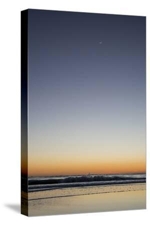 California, Carpinteria, Santa Barbara Channel, Beach at a Night-Alison Jones-Stretched Canvas Print