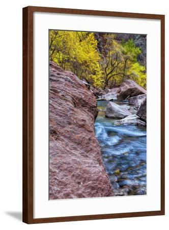 USA, Utah, Zion National Park. Stream in Autumn Landscape-Jay O'brien-Framed Photographic Print