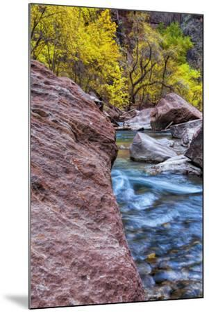 USA, Utah, Zion National Park. Stream in Autumn Landscape-Jay O'brien-Mounted Photographic Print