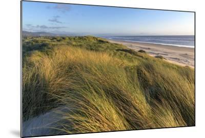 Sand Dunes and Pacific Ocean in the Oregon Dunes NRA, Oregon-Chuck Haney-Mounted Photographic Print