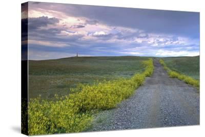 Union Pacific Lewis and Clark Monument, Browning, Montana-Angel Wynn-Stretched Canvas Print