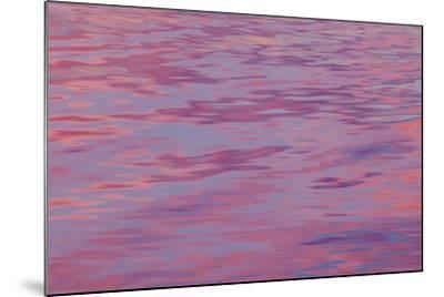 USA, Washington State, Hood Canal. Sunset Reflections on Water-Don Paulson-Mounted Photographic Print