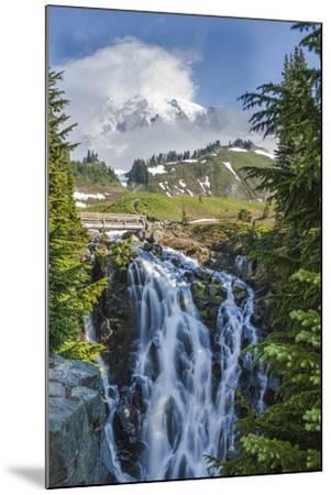 Braided Myrtle Falls and Mt Rainier, Skyline Trail, NP, Washington-Michael Qualls-Mounted Photographic Print