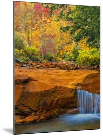 USA, West Virginia, Douglass Falls. Waterfall over Rock Outcrop-Jay O'brien-Mounted Photographic Print