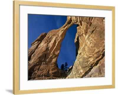 Utah. Angel Arch in Arch Canyon. Manti-Lasal NF. Great Canyonlands-Scott T^ Smith-Framed Photographic Print
