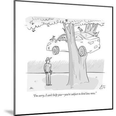 """""""I'm sorry, I can't help you?you're subject to bird law now."""" - New Yorker Cartoon--Mounted Premium Giclee Print"""