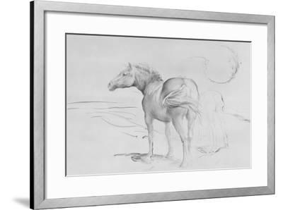 Horses at Coolmore, 1990-Antonio Ciccone-Framed Giclee Print