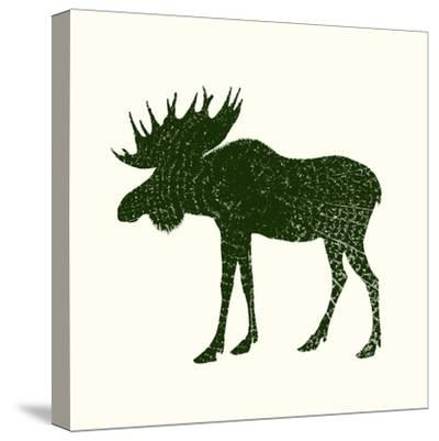 Timber Animals VI-Anna Hambly-Stretched Canvas Print