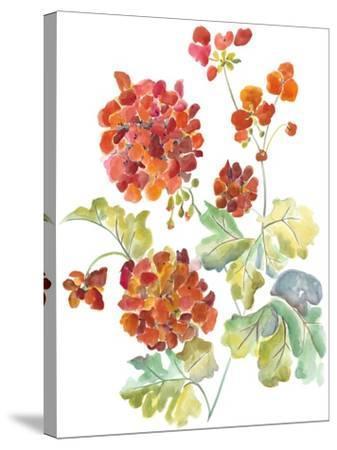 Cranesbills II-Chariklia Zarris-Stretched Canvas Print