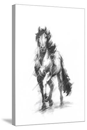 Dynamic Equestrian I-Ethan Harper-Stretched Canvas Print