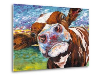 Curious Cow I-Carolee Vitaletti-Metal Print
